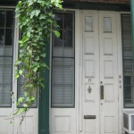 Doors of New Orleans