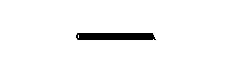 cocorrina logo2-1