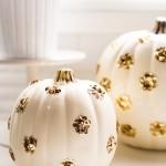 Celebration: Halloween Pumpkins