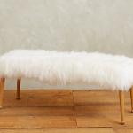 Furniture: Fun Fur