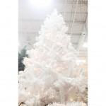 Christmas: White Trees
