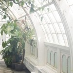The Friday Five: Curved Windows
