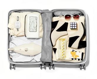 raden-luggage-1
