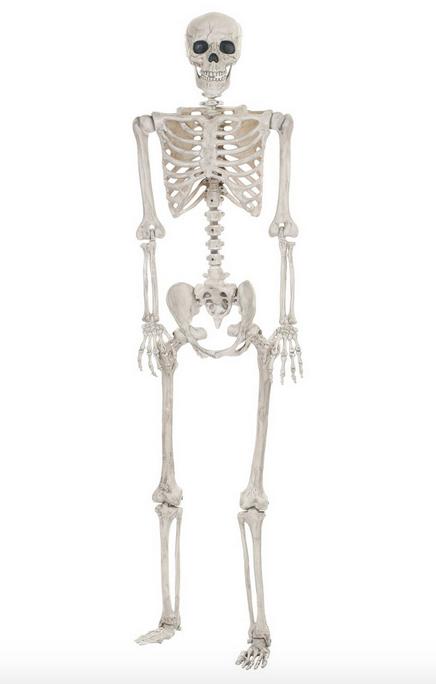 posable-skeleton-target