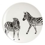 Two for Tuesday: Zebra, Zebra